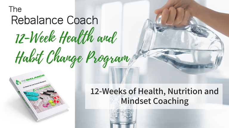 Rebalance Online Nutrition Coaching Programs