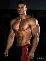 The Physique Blueprint